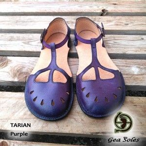 TARIAN Purple Stock